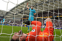 Hugo Lloris of Tottenham Hotspurr screams in pain after conceding the first goal during Brighton & Hove Albion vs Tottenham Hotspur, Premier League Football at the American Express Community Stadium on 5th October 2019