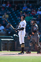 Surprise Saguaros first baseman Will Craig (45), of the Pittsburgh Pirates organization, at bat in front of catcher Daulton Varsho (8) during an Arizona Fall League game against the Salt River Rafters on October 9, 2018 at Surprise Stadium in Surprise, Arizona. Salt River defeated Surprise 10-8. (Zachary Lucy/Four Seam Images)