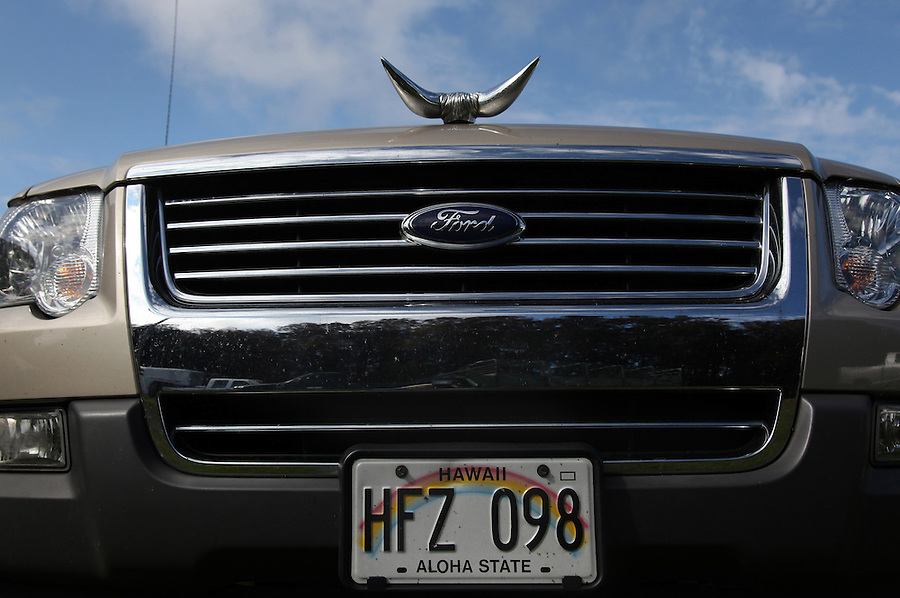 A Ford truck belonging to one of the cowboys proudly displays bull horns and a Hawaiian license plate at Ponoholo Ranch in North Kohala, Hawaii.