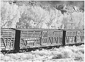 3/4 view of D&amp;RGW #5972 in train at Elkhorn.<br /> D&amp;RGW  Elkhorn, CO  Taken by Richardson, Robert W. - 10/9/1953