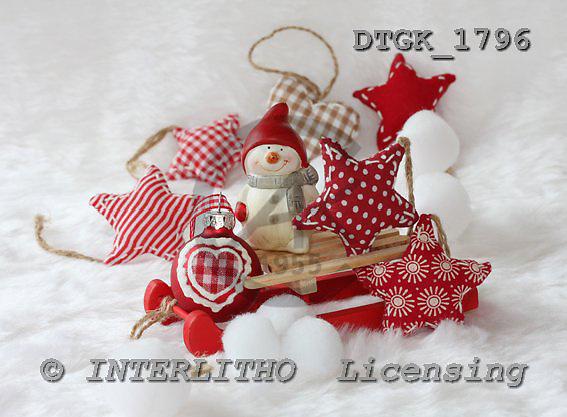 Gisela, CHRISTMAS SYMBOLS, photos, DTGK1796,#XX# Blumen, flores, retrato