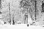 A snowy street with snow covered power lines hanging overhead in black and white