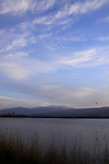Israel, Upper Galilee, the Hula lake, Mount Hermon is in the background