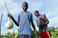 ETHIOPIA, Gambela, region Itang, Nuer village Pilual, boy Bhan 12 years old / AETHIOPIEN, Gambela, Region Itang, Dorf Pilual der Ethnie NUER, Hof von Herr Mun Kunen und Frau Neelam , sie sind vor dem Buergerkrieg aus dem Suedudan gefluechtet, Sohn Bhan 12 Jahre erntet mit Vater Kürbisse