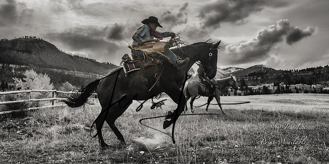 Bucking horse and cowboy in the Beartooth mountains Wyoming Cowboy and Cowgirl photographs of western ranches working with horses and cattle by western cowboy photographer Jess Lee. Photographing ranches big and small in Wyoming,Montana,Idaho,Oregon,Colorado,Nevada,Arizona,Utah,New Mexico. Western Cowboy and Cowgirl photos,
