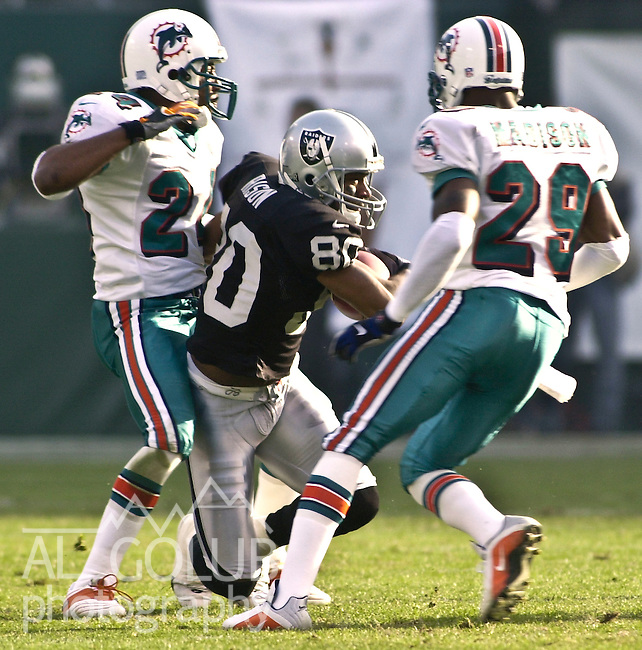 Oakland Raiders vs. Miami Dolphins at Oakland Alameda County Coliseum Saturday, January 6, 2001.  Raiders beat Dolphins  27-0.  Oakland Raiders wide receiver Andre Rison (80).