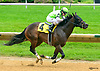 Key To The Highway winning at Delaware Park on 6/7/17