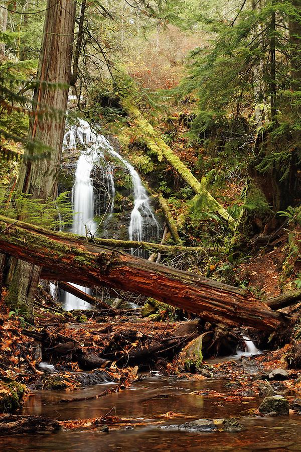 Cascade Creek flowing over Cascade Falls, Moran State Park, Orcas Island, San Juan County, Washington, USA
