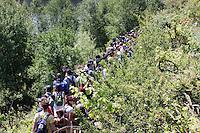 Val di Susa: corteo degli abitanti della val di Susa, nel bosco intorno al cantiere della maddalena, per protestare contro l'avvio dei lavori per il tunnel dell'alta velocità.