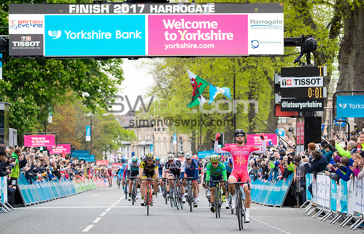Picture by Alex Whitehead/SWpix.com - 29/04/2017 - Cycling - 2017 Tour de Yorkshire - Stage 2, Tadcaster to Harrogate - Cofidis' Nacer Bouhanni celebrates winning Stage 2 in Harrogate.