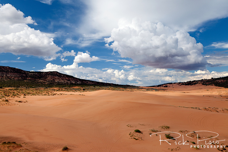 Sand Dunes at Utah's Coral Pink Sand Dunes State Park near Kanab.