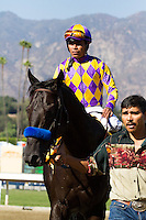 Monument and Martin Garcia winner of the Bob Benoit Cal Cup Juvenile at Santa Anita Park in Arcadia, California on October 13, 2012.