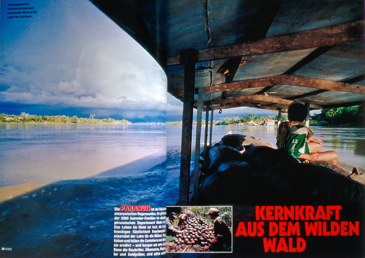 Magazine article about Brazil nuts in southeastern Peru