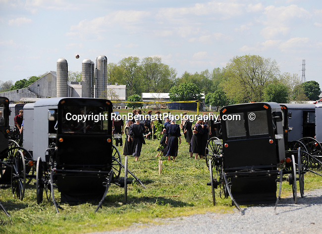 "Amish girls and boys gather with their Buggies in farm field Pennsylvania Dutch country in Lancaster County PA, Pennsylvania Dutch in Amish Country Lancaster County Pennsylvania, Amish, Horse and buggy with amish family on backroads of Pennsylvainia, buggy, amish family, buggy and horse, Commonwealth of Pennsylvania, Commonwealth of Pennsylvania, natives, Northeasterners, Middle Atlantic region, Philadelphia, Keystone State, 1802, Thirteen Colonies, Declaration of Independence, State of Independence, Liberty, Conestoga wagons, Quaker Province, Founding Fathers, 1774, Constitution written, Photography history, Fine art by Ron Bennett Photography.com, Stock Photography, Fine art Photography and Stock Photography by Ronald T. Bennett Photography ©, All rights reserved copyright Ron Bennett Photography.Com, FINE ART and STOCK PHOTOGRAPHY FOR SALE, CLICK ON  ""ADD TO CART"" FOR PRICING,"