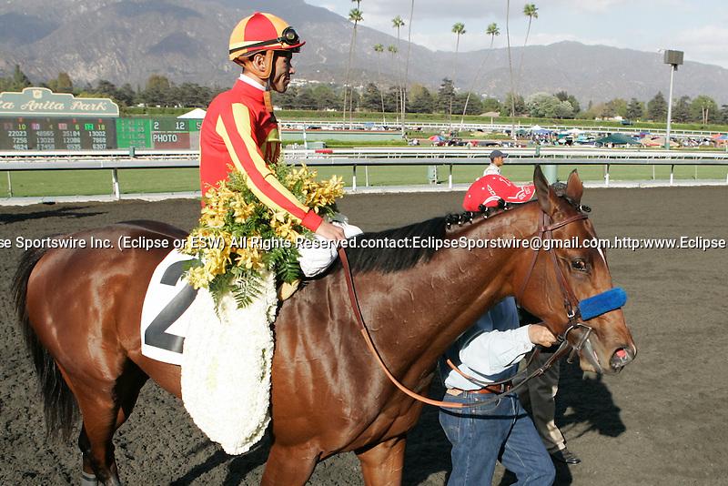 04 October 2009: Lookin at Lucky and Garrett Gomez win the Norfolk Stakes (GI) at Oak Tree at Santa Anita Park, Arcadia, CA.