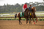 DEL MAR, CA  AUGUST 10:  #5 Collusion Illusion, ridden by Joseph Talamo, in the post parade of the Best Pal Stakes (Grade ll) on August 10, 2019 at Del Mar Thoroughbred Club in Del Mar, CA. (Photo by Casey Phillips/Eclipse Sportswire/CSM)