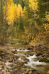 Autumn colors of Big Creek