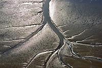 Elbwatt im Muehlenberger Loch: EUROPA, DEUTSCHLAND,HAMBURG,  (GERMANY), 28.09.2014: Elbwatt im Muehlenberger Loch, bei Ebbe entstehen an den Raendern des Elbstroms Wattflaechen,
