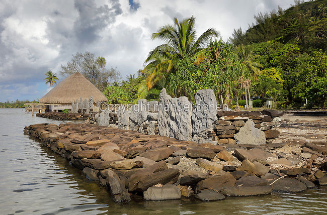 Marae Fare Tai, a stone courtyard with platform and standing stones, built by a Polynesian civilisation and used as a ceremonial and religious site, and in the distance, Fare Pote'e, a reconstruction of a round communal dwelling, built on stilts with a thatched roof, on the banks of Lake Fauna Nui or Maeva Lake, at the archaeological site at Maeva village, on Huahine-Nui on the island of Huahine, in the Leeward Islands, part of the Society Islands, in French Polynesia. This is a marae tupuna or family shrine, attached to the Fare Tou chiefdom, and its name means House of the Sea. The marae are thought to date from 13th - 15th centuries. The Fare Pote'e has been used as a house, meeting room, church, school and museum and has been rebuilt several times, most recently in 2000-01 by the Opu Nui Association. Maeva is thought to be an abandoned royal settlement, with many megalithic structures including marae, houses, agricultural structures, stone fish traps and fortification walls. Picture by Manuel Cohen