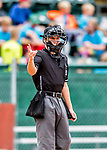 25 July 2017: Minor League Umpire Roberto Pattison works home plate during a game between the Tri-City ValleyCats and the Vermont Lake Monsters at Centennial Field in Burlington, Vermont. The Lake Monsters defeated the ValleyCats 11-3 in NY Penn League action. Mandatory Credit: Ed Wolfstein Photo *** RAW (NEF) Image File Available ***