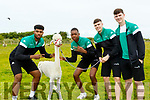 L-R  Sanmi Fajana, Leeroy Odiahi, Matthew Harper and David Lehane of the U18 Irish Baskeyball team,  get to meet Rosie Boo, an Alpaca, at Sandy Feet Pet Farm, Camp , which was one of the stops on their day long Team Bonding day last Saturday.
