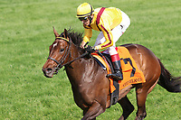 LEXINGTON, KY - April 15, 2017.  #7 Lady Aurelia and jockey John Velazquez win the 21st Running of The Giant's Causeway (Listed) $100,000 for owner Stonestreet Stables, George Bolton and Peter Leidel and trainer Wesley Ward at Keeneland Race Course.  Lexington, Kentucky. (Photo by Candice Chavez/Eclipse Sportswire/Getty Images)