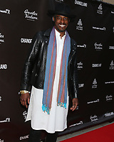 "LOS ANGELES - JUN 3:  Ahmed Best at the ""Changeland"" Los Angeles Premiere at the ArcLight Hollywood on June 3, 2019 in Los Angeles, CA"