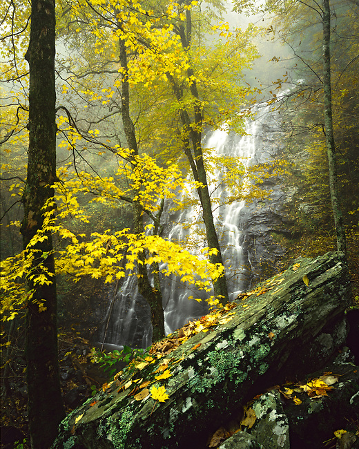 Autumn color at Crabtree Falls, Blue Ridge Parkway