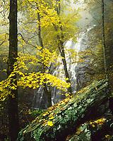 Autumn color at Crabtree Falls, Blue Ridge Parkway