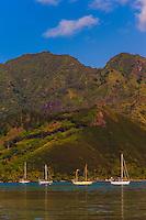 Sailboats, island of Moorea, French Polynesia.