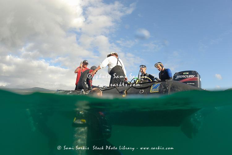 Group of scuba divers in water and on boat, (split shot half underwater), Ecuador, Galapagos Archipelago, San Cristobal Island