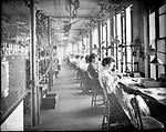 Frederick Stone negative. New England Watch Co., Finishing Room 1905.