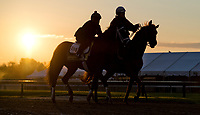 BALTIMORE, MD - MAY 14: Kentucky Derby winner Always Dreaming jogs with a lead pony on the track after exercising in preparation for the Preakness Stakes next week at Pimlico Race Course on May 14, 2017 in Baltimore, Maryland.(Photo by Scott Serio/Eclipse Sportswire/Getty Images)