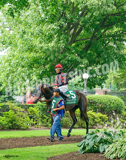 Vielsalm before The Robert G. Dick Memorial Stakes (gr 3) at Delaware Park on 7/9/16