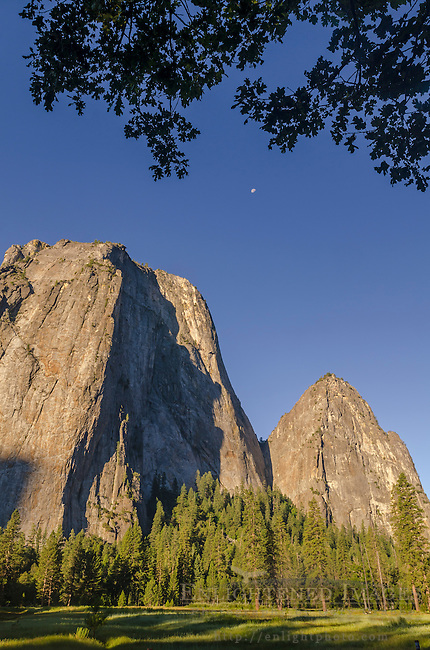 Cathedral Rocks, Yosemite Valley, Yosemite National Park, California