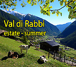 Val di Rabbi - estate