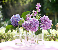 A simple yet effective arrangement of hydrangeas and stocks in a collection of glass bottles