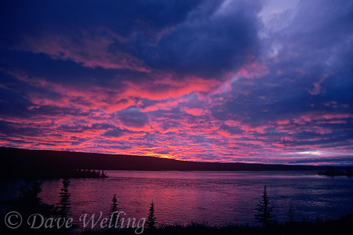 731000266 quiet light after sunset casts a purple and reddish glow on whitefish lake adding to the serenity of the scene in the northwest territories of canada