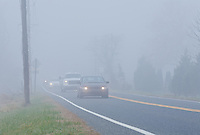 Cars with their headlights on, driving slowly on a foggy road