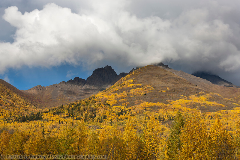 Autumn foliage on the mountain hillsides of the Chugach mountains near Eklutna lake, just north of Anchorage, Alaska.