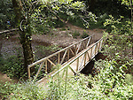 Hiker's bridge over West Waddell Creek