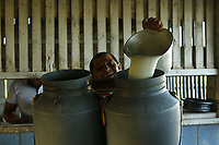 Bubalinocultura Soure_Cachoeira do Arari. todas brutas