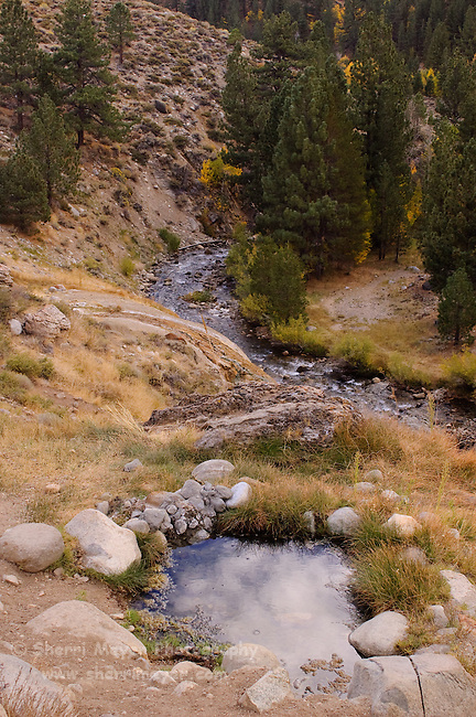 Buckeye Hot Springs, Bridgeport, California