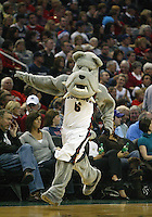 12 December 2009: Gonzaga Bulldogs mascot Spike entertained the crowed in attendance during a timeout against Davidson. Gonzaga won 103-91 over Davidson in the 2009 Comcast Battle game held at Key Arena in Seattle, WA.