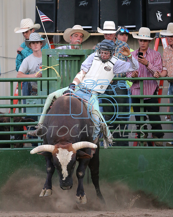 Images from the 5th Annual Carson City Bulls, Broncs &amp; Barrels event at Fuji Park, in Carson City, Nev., on Saturday, July 29, 2017. <br /> Photo by Cathleen Allison/Nevada Photo Source