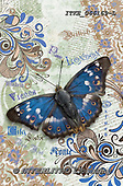 Isabella, REALISTIC ANIMALS, REALISTISCHE TIERE, ANIMALES REALISTICOS, paintings+++++,ITKE066169-L,#a#, EVERYDAY ,collage ,butterfly,butterflies