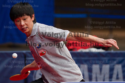 Malta's Li Kewei plays during the qualifier of the ITTF World Tour Hungarian Open in Budapest, Hungary on January 17, 2012. ATTILA VOLGYI