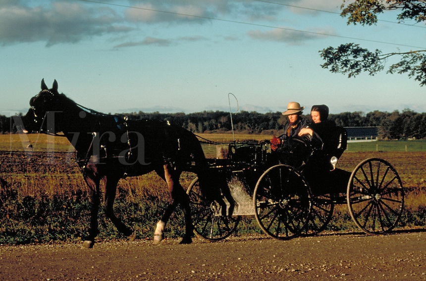 A Canadian Amish husband and wife ride in an open horse drawn buggy in the countryside. Amish family. Kitchener Ontario Canada Amish communtiy.