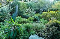 France, Manche (50), Vauville, Jardin botanique du château de Vauville