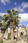 Israel, Mount Carmel. Druze village Usfiya's old village center